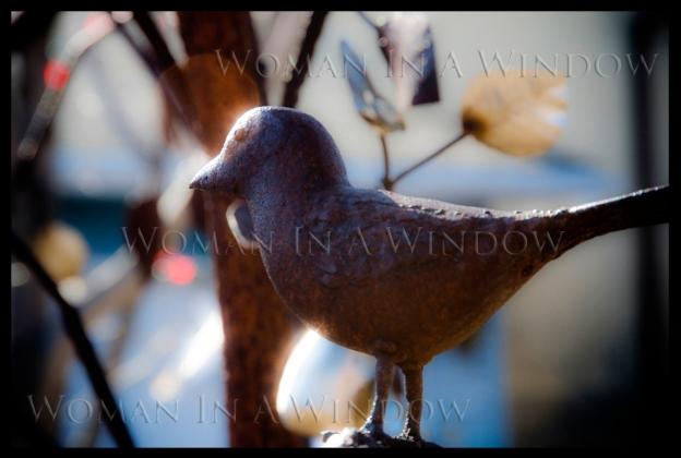 massey-walk-metal-tree-bird-dull-2