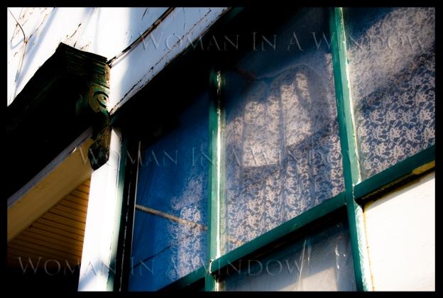 massey-walk-woodwork-more-window