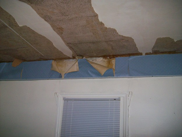 walls minus drop ceiling, but clinging to the panelling