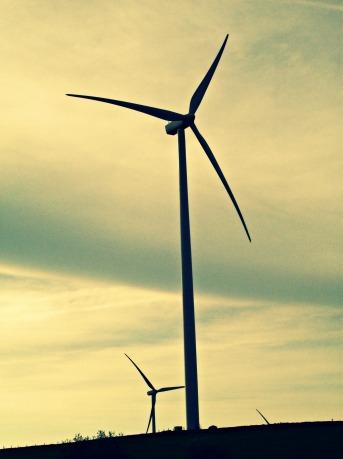 NY Windfarm