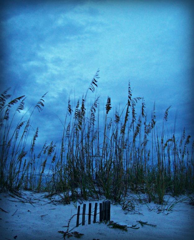 sandy shore Pensacola Beach