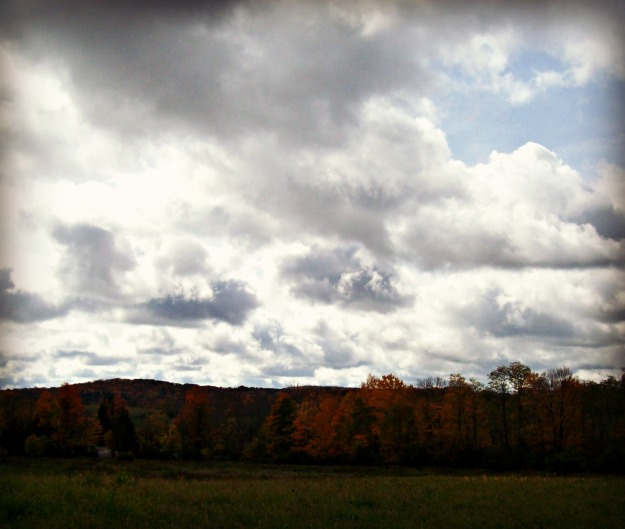 fall colors and cloudy sky on the horizon